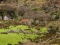 black-valley-scene